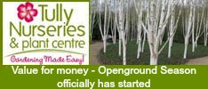 Tullys Nurseries-Value for money- Openground Season officially has started!