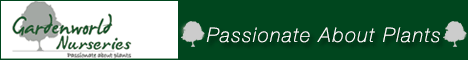GardenWorld - Passionate about Plants