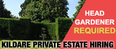 Head Gardener Required for Private Estate in Naas, Co. Kildare.