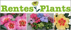 Rentes Plants 2016