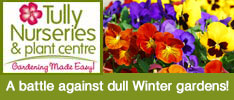 Tullys Nurseries-A battle against dull Winter gardens!