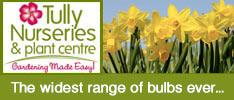 Tullys Nurseries-The widest range of bulbs ever...