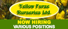 Yellow Furze Nurseries - Now Hiring Various Positions